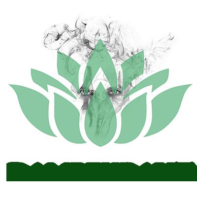 Dampfkraut-Logo
